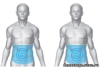 зона кишечника